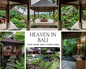 Bali retreat, women's weight loss retreat, perth weight loss
