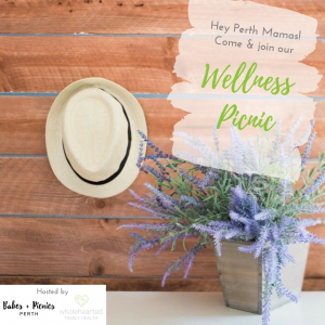 wellness picnic, babes and picnics, mums group perth, mum meetup