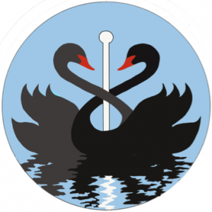 black swan first aid training