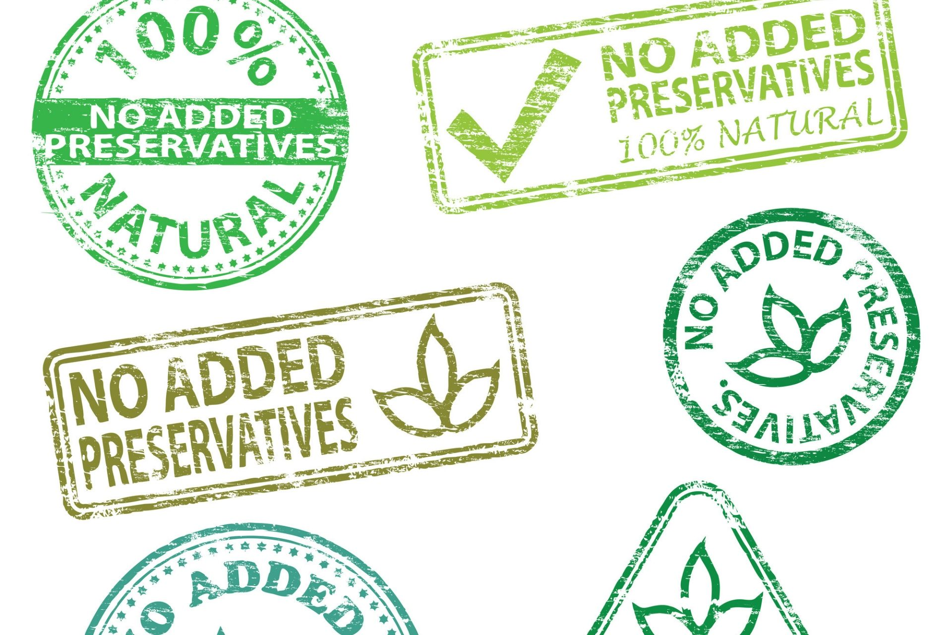 common food preservatives