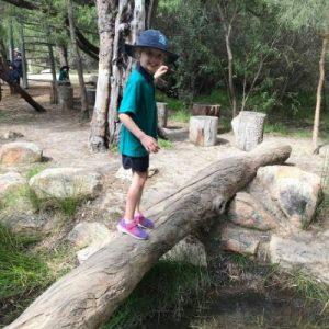 best nature playgrounds in perth